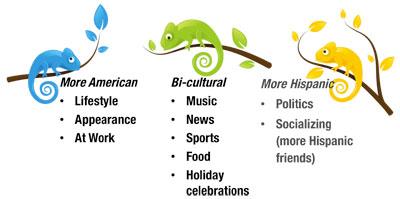 Chameleons-interests